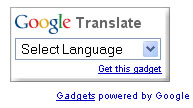Google Translation Widget
