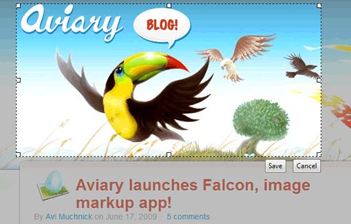 aviary-falcon