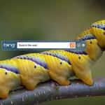 Set Bing Homepage Image as Your Desktop Image with Bing Desktop Beta