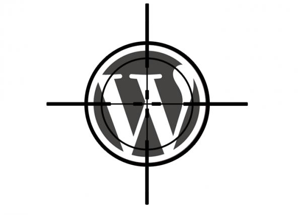 wp_bruteforce_opt1